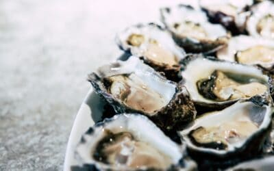 OYSTERS ARE AN APHRODISIAC. SO THERE'S THAT. HERE ARE 5 OTHER REASONS WHY THEY ARE GOOD FOR YOU