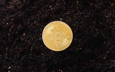 CASH IS KING? NOT ANYMORE. A PANDEMIC WORLD PUSHES DIGITAL CURRENCY TO NEW LEVELS